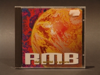 RMB-This World Is Yours CD